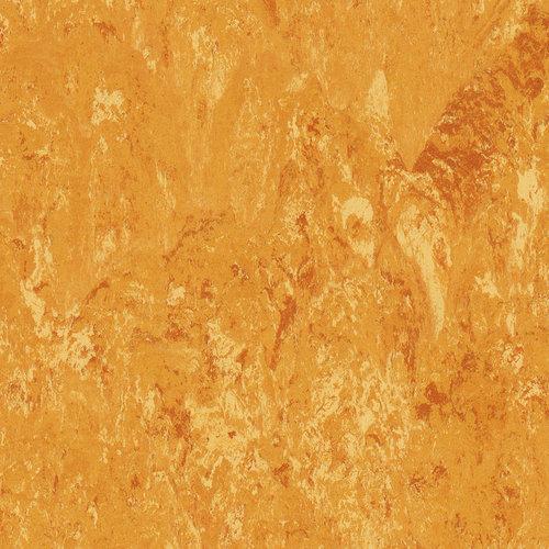 KWG Linoleum-Fertigparkett Picolino mango 550016