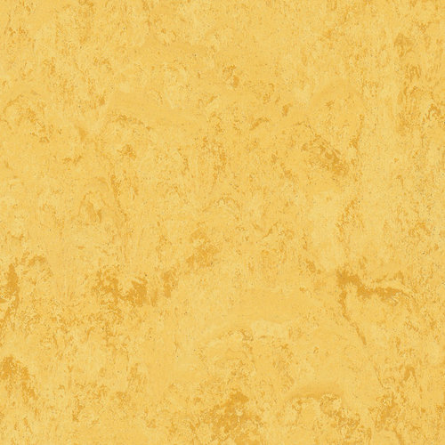 KWG Linoleum-Fertigparkett Picolino zitrone 550017